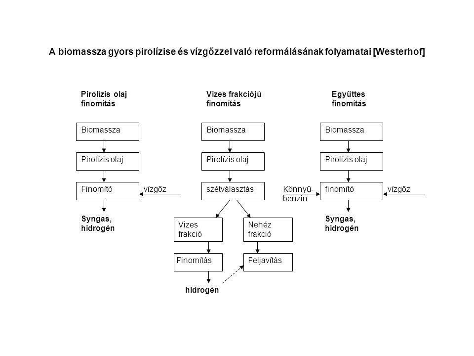 A biomassza gyors pirolízise és vízgőzzel való reformálásának folyamatai [Westerhof]